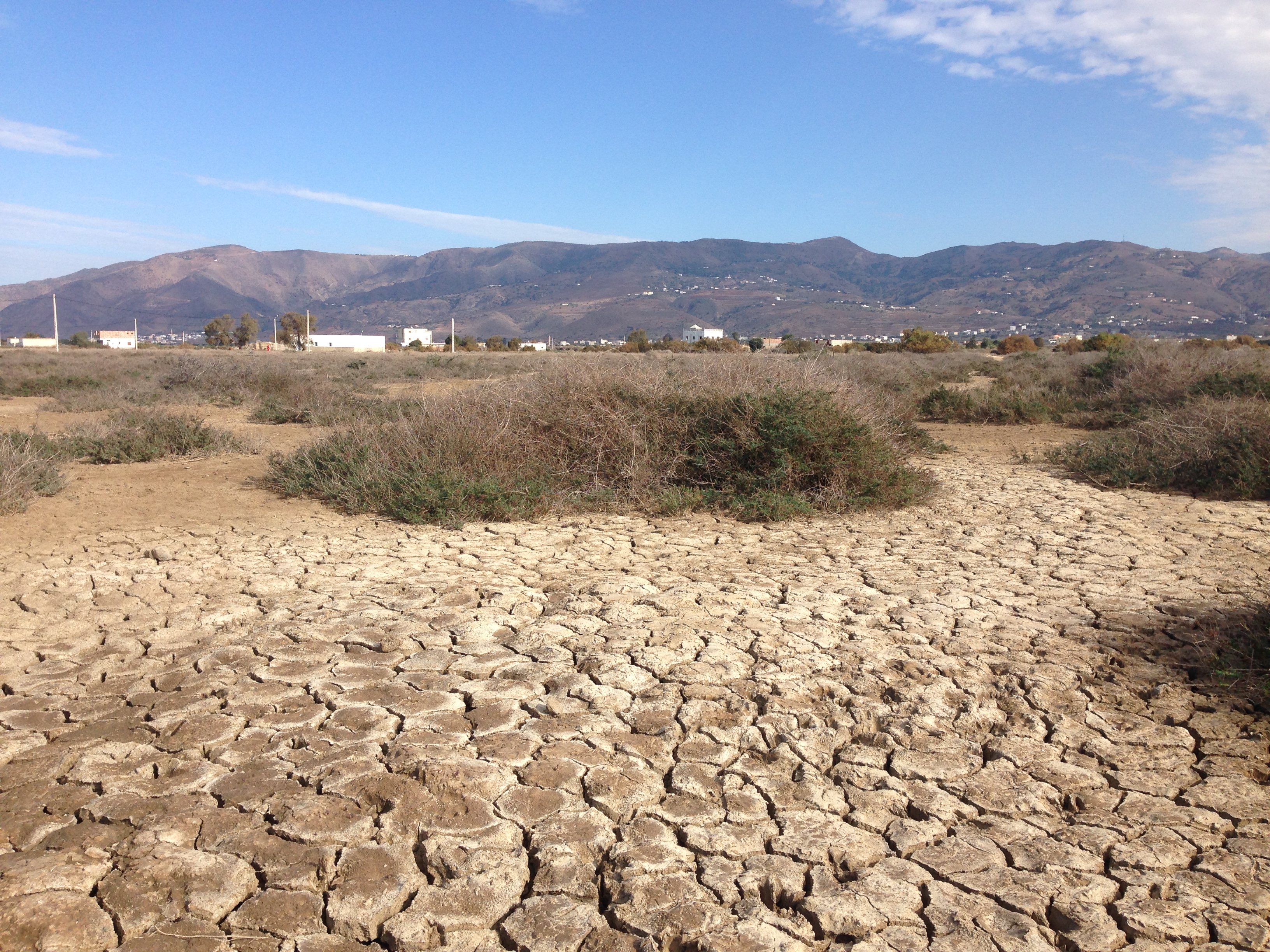 full width image of drought