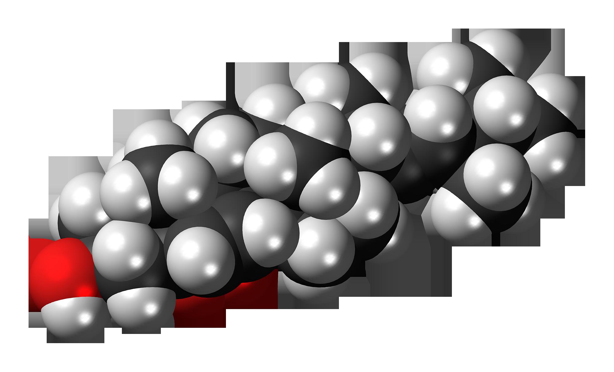fileergosterol peroxide molecule spacefillpng