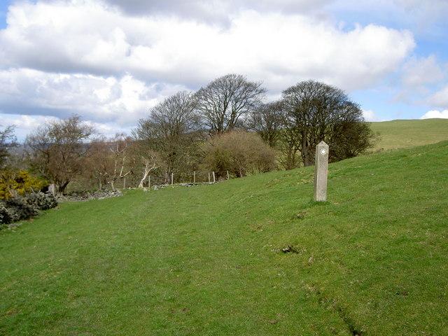 Footpath to Moel Arthur. - geograph.org.uk - 760328
