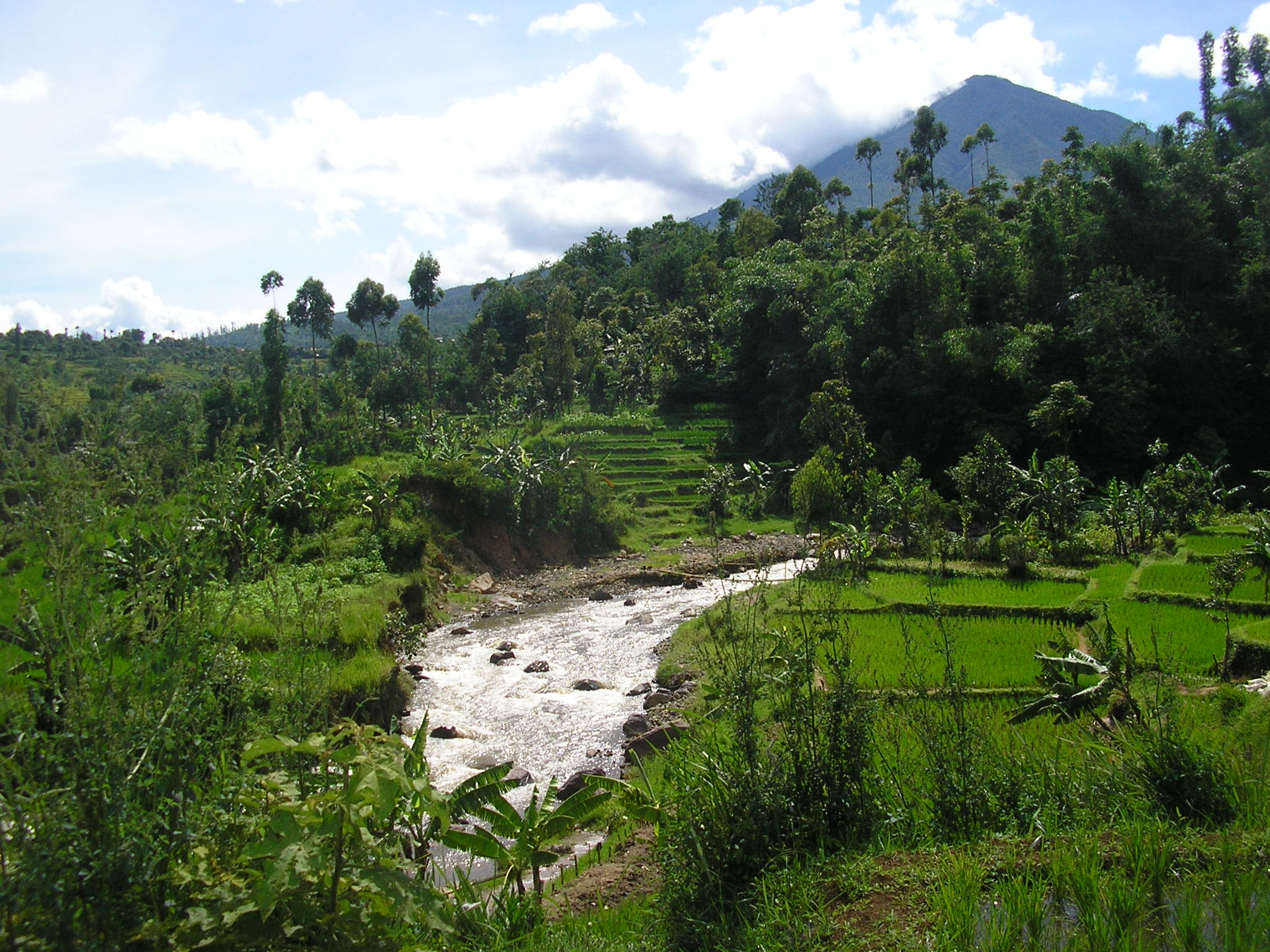 Garut Indonesia  city photos gallery : Garut westjava indonesia daytime Wikipedia, the free ...