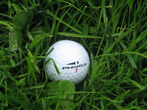 File:Golf Ball in Rough.jpg
