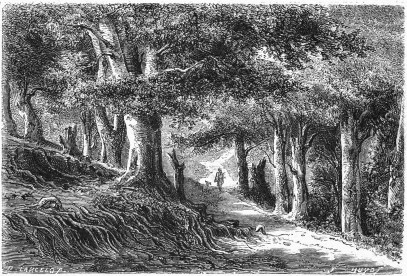 File lancelot for t baia de wikimedia commons - Dessin de foret ...