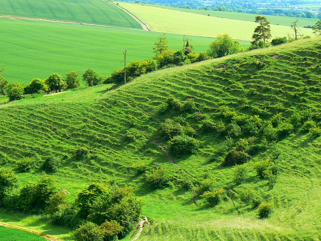 File:Landform near Alton Priors - geograph.org.uk - 834272.jpg ...