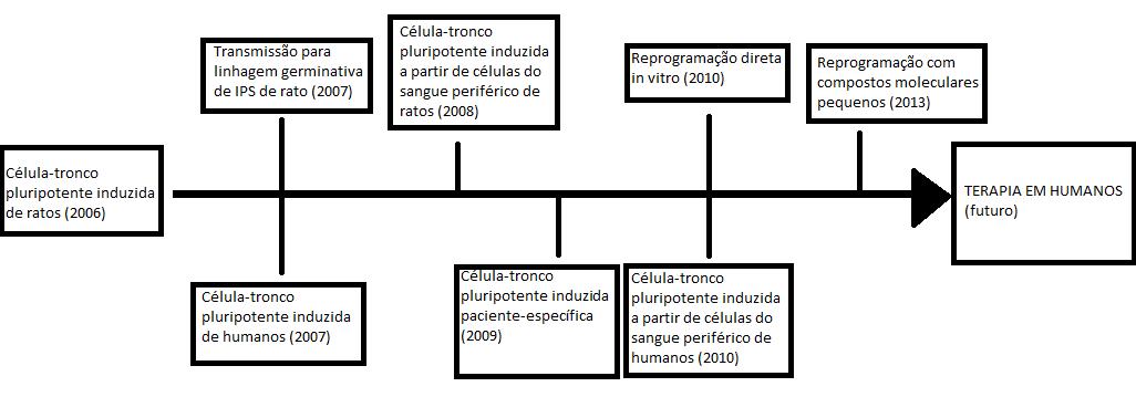 Ficheiro:Linha do tempo IPS.png - Wikipédia, a enciclopédia livre
