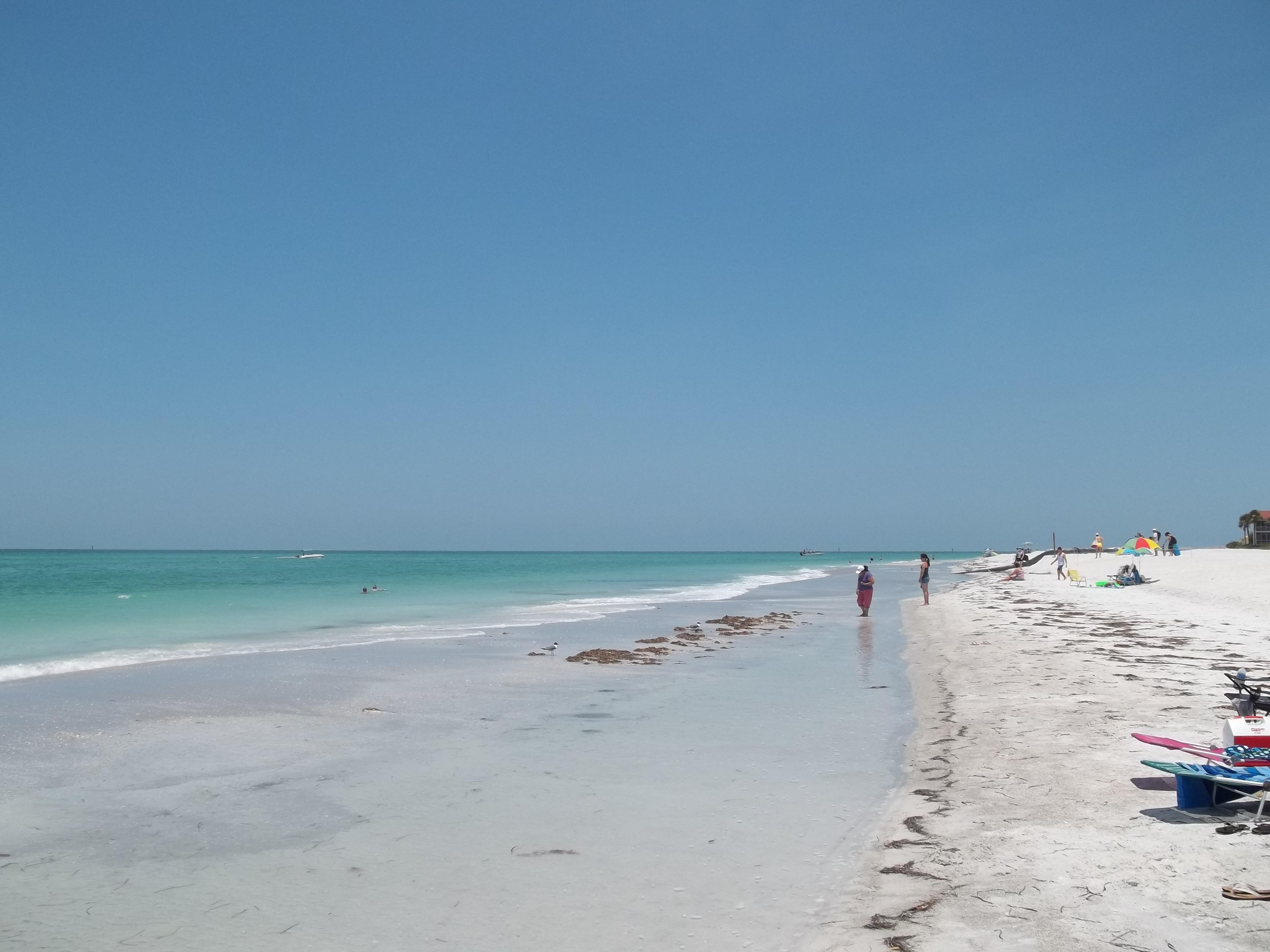 Beach Siesta Key Hotels Booking For Tomorrow