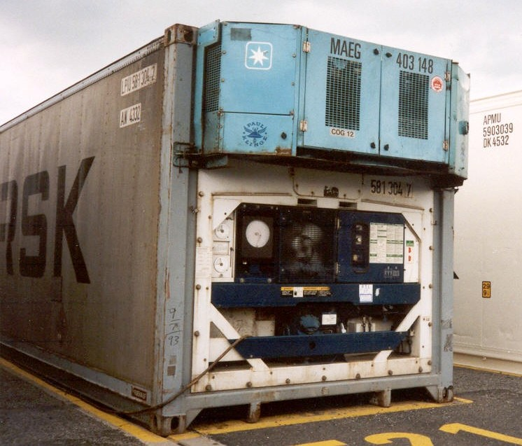 A reefer container with generator, a refrigerated container with its genset.