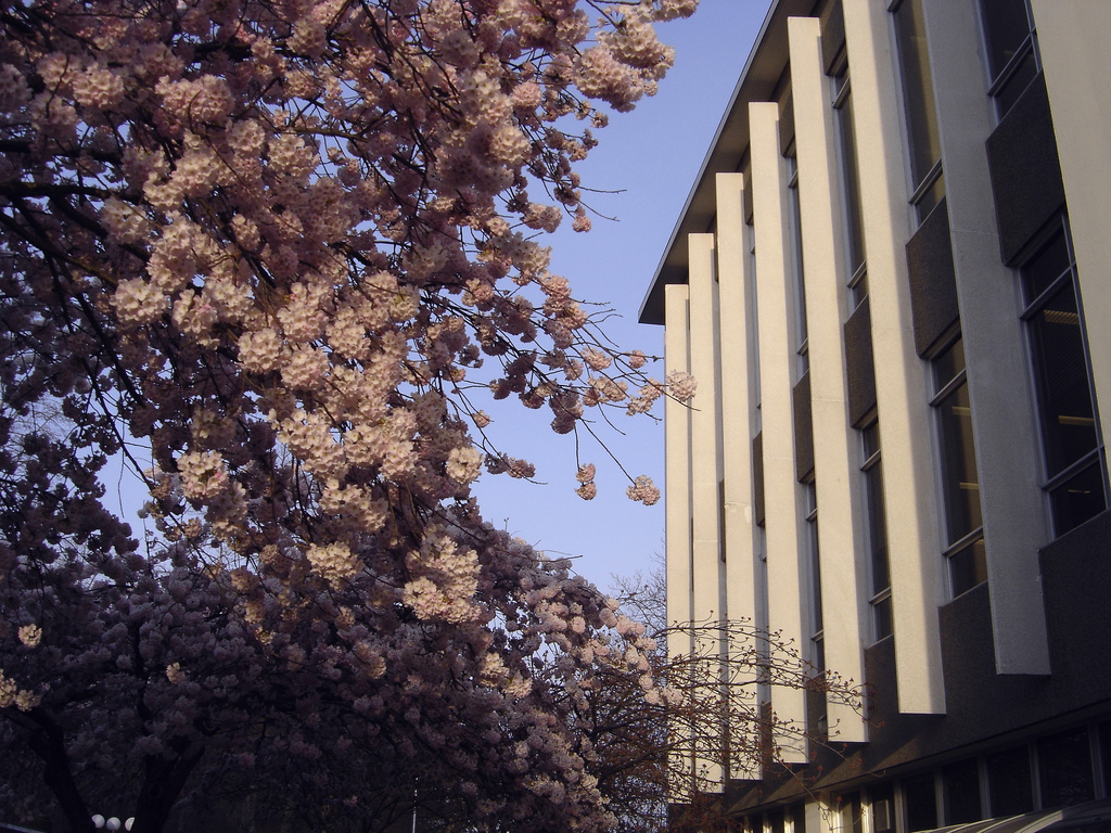 The McPherson Library at the University of Victoria