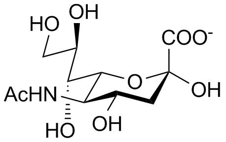 N-Acetyl-Neuraminic Acid (Sialic acid)