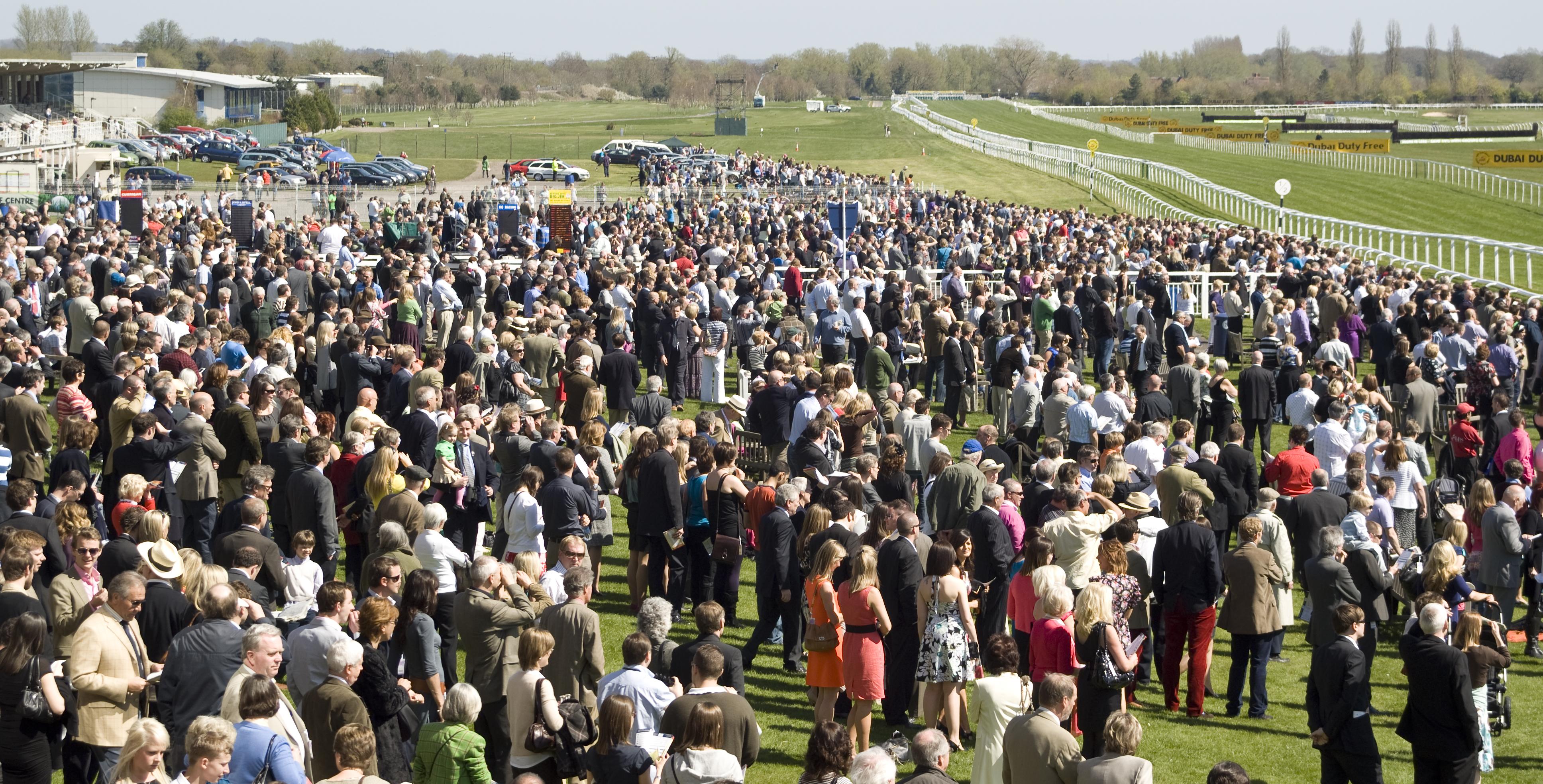 Description Newbury Racecourse, crowd.jpg