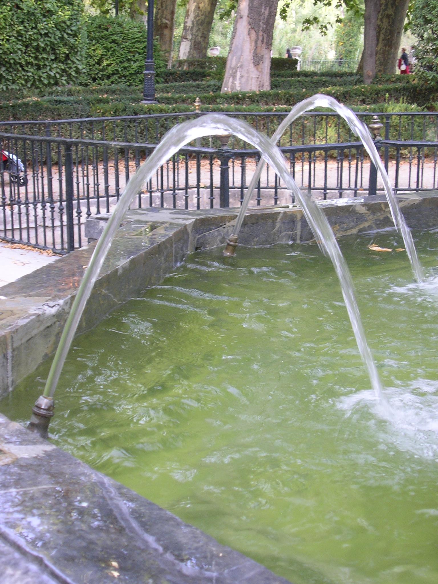 Wasserstrahlen beschreiben Parabeln