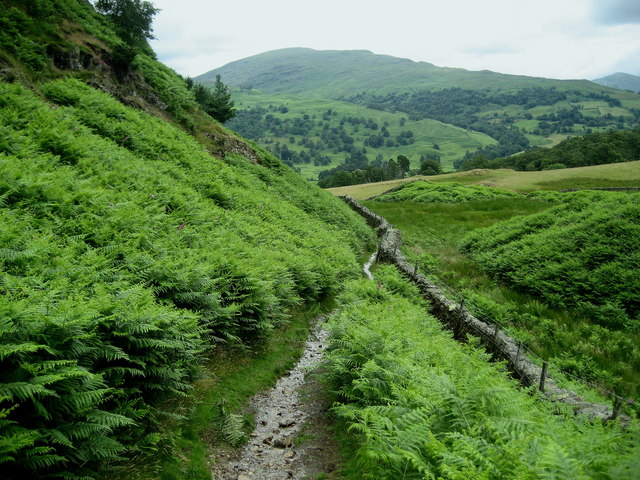 Path descending off Loughrigg Fell - geograph.org.uk - 1396381