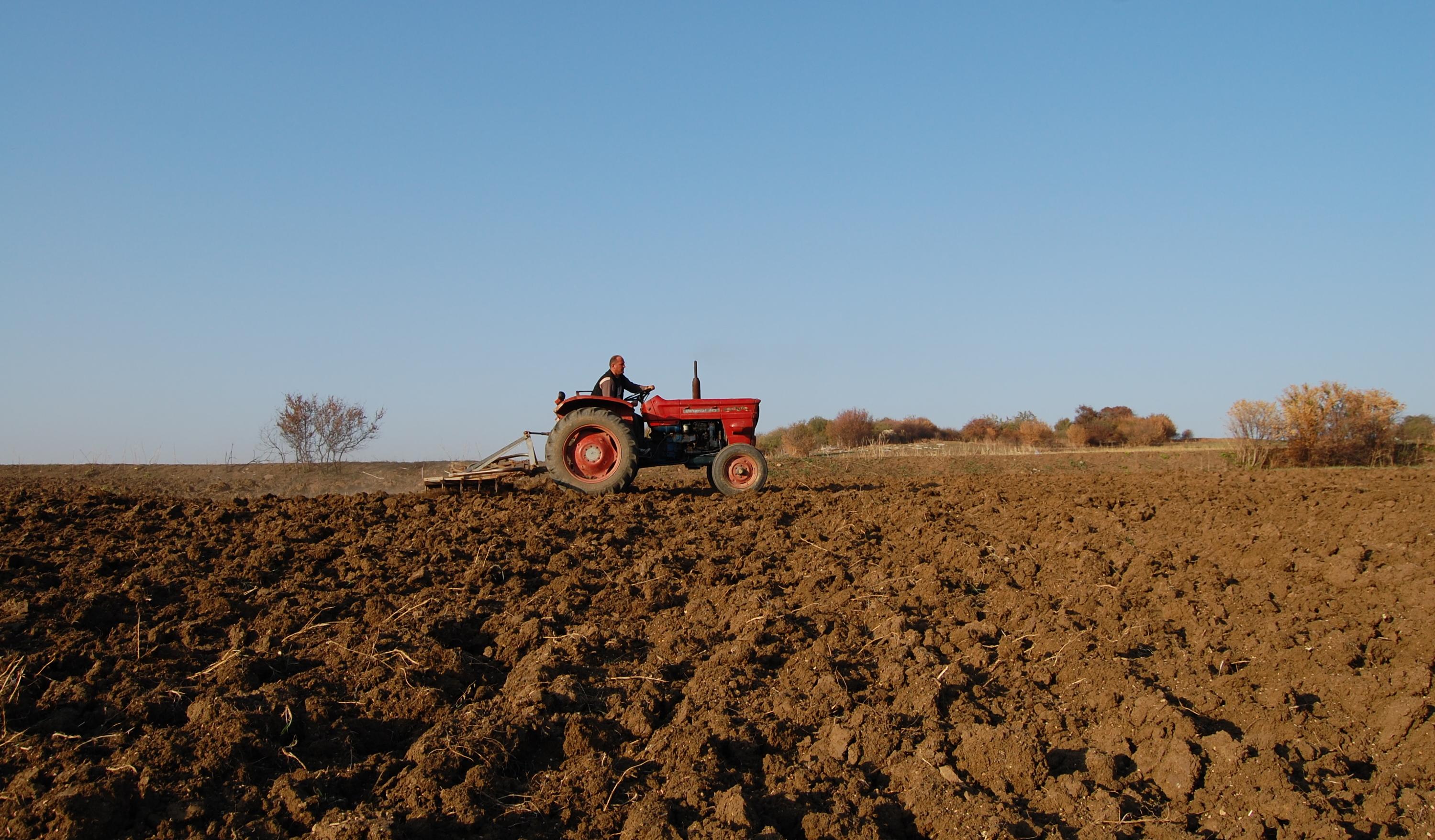 Die Mehrheit der Erwerbstätigen arbeitet in der Landwirtschaft.