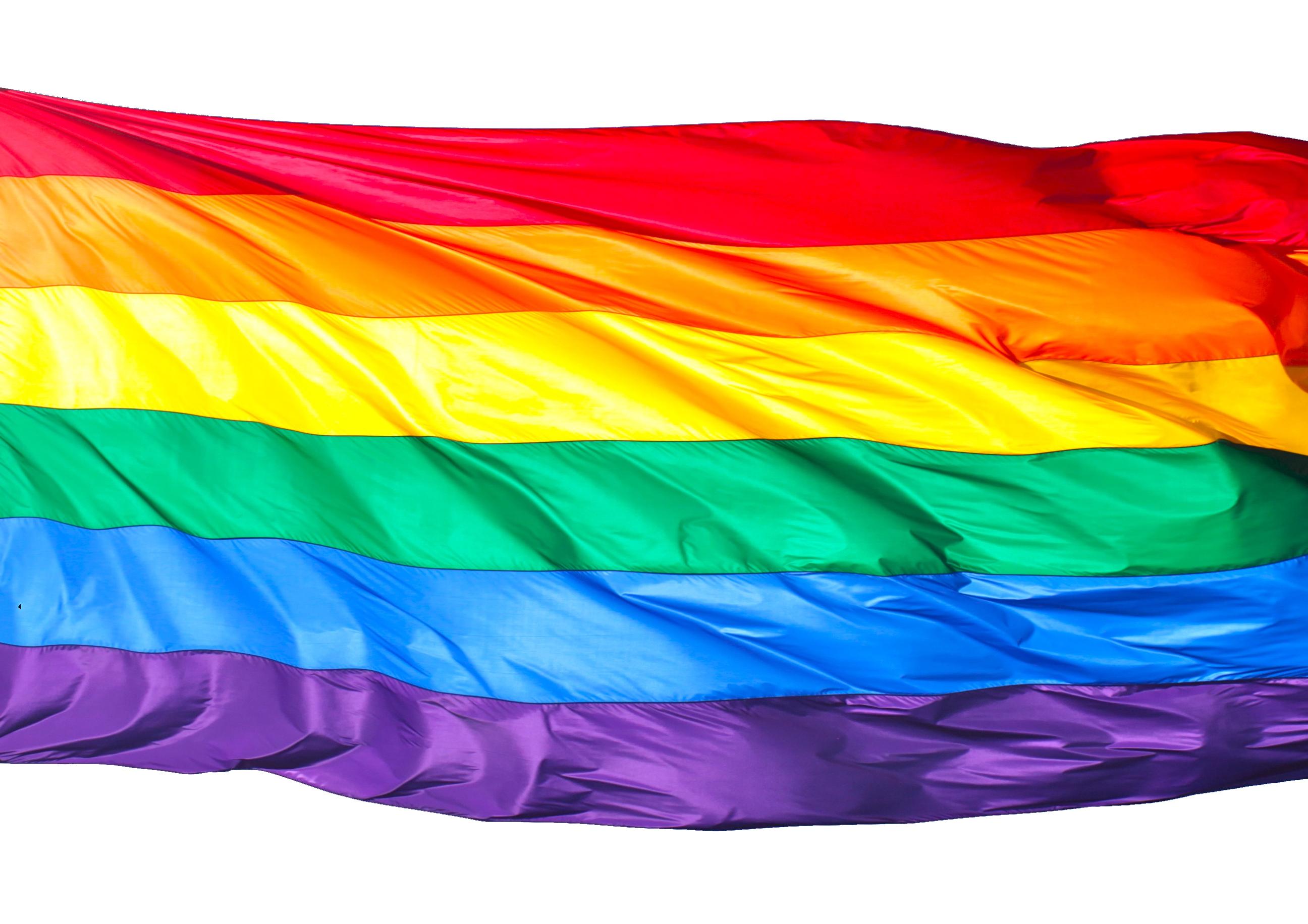 is vince vouyer gay