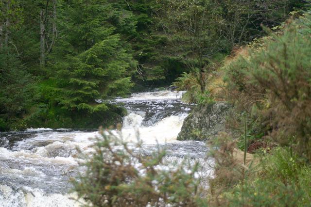 River Severn - Afon Hafren - geograph.org.uk - 111542