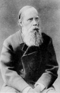 М. Е. Салтыков в 1880-е годы