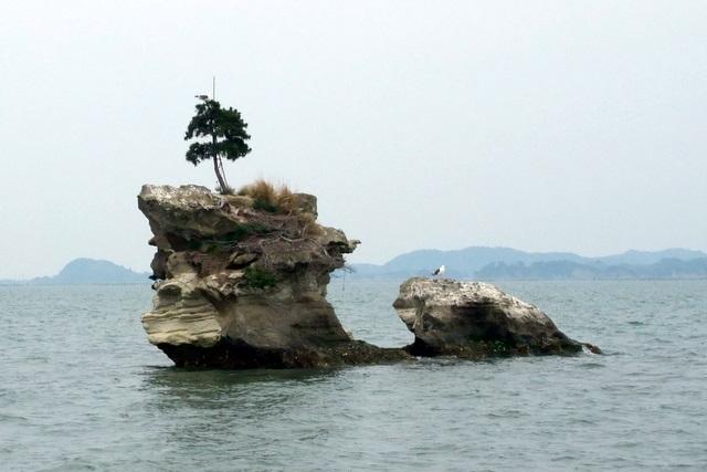 http://upload.wikimedia.org/wikipedia/commons/4/4e/Senganjima.jpg