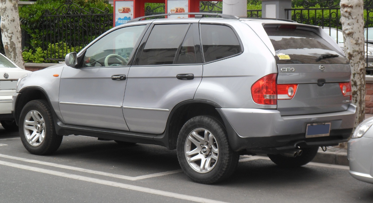 ssang young bmw x5