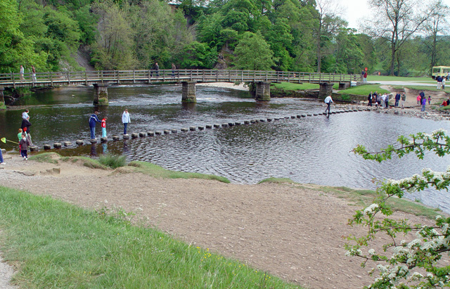 Stepping Stones in the river Wharfe - geograph.org.uk - 823827