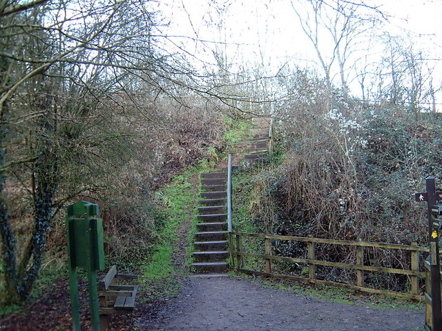 Steps on the footpath to Tintern Old Station - geograph.org.uk - 477048