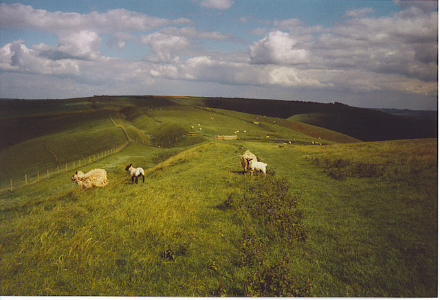 The Wansdyke on Tan Hill. - geograph.org.uk - 187162