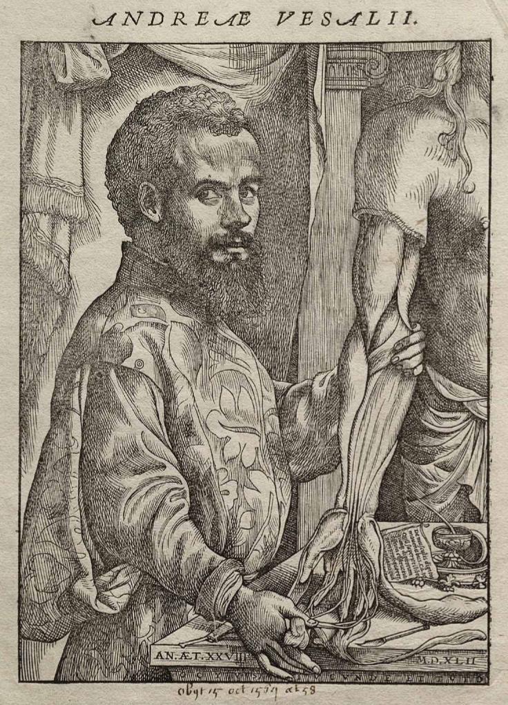 Kim był Andreas Vesalius
