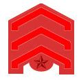 한국 광복군 정사 계급장.PNG
