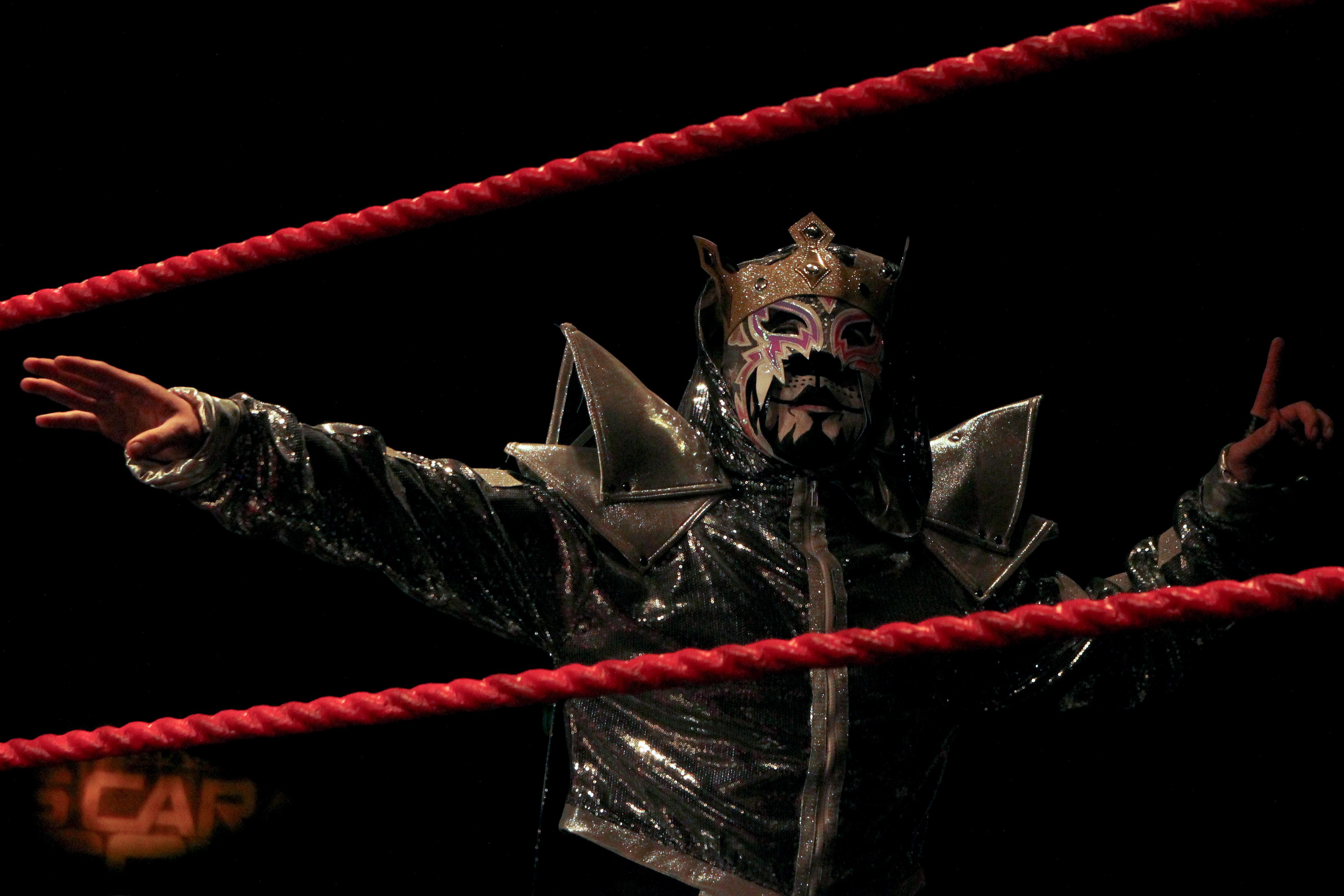 puma king wrestler