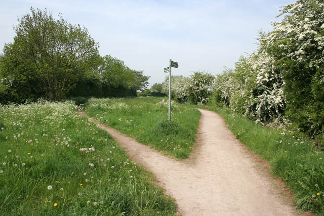 A choice of public right of way - geograph.org.uk - 809502