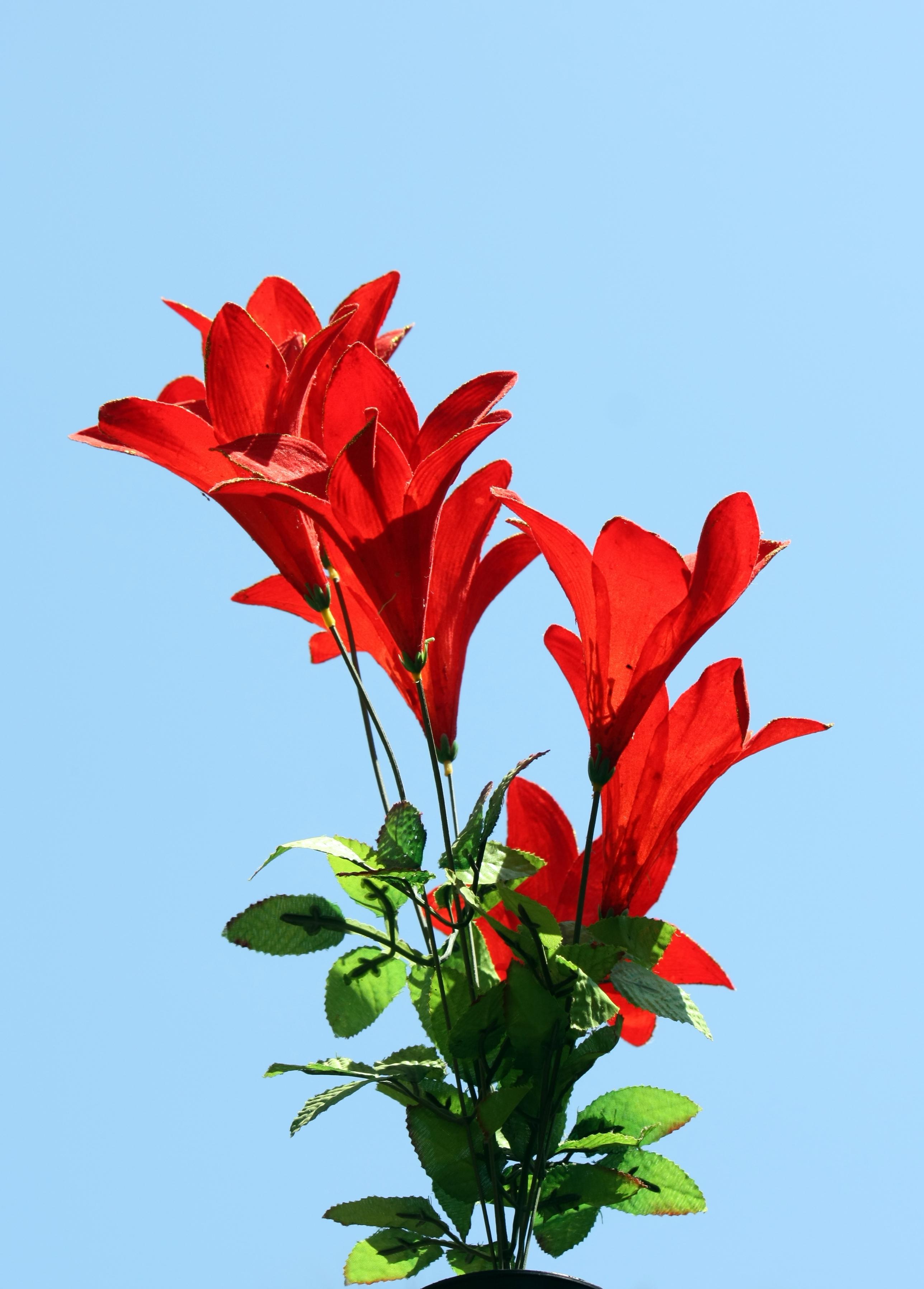 fileartificial flowersjpg wikimedia commons