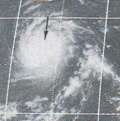 Hurricane Celeste (1972) Category 4 Pacific hurricane in 1972