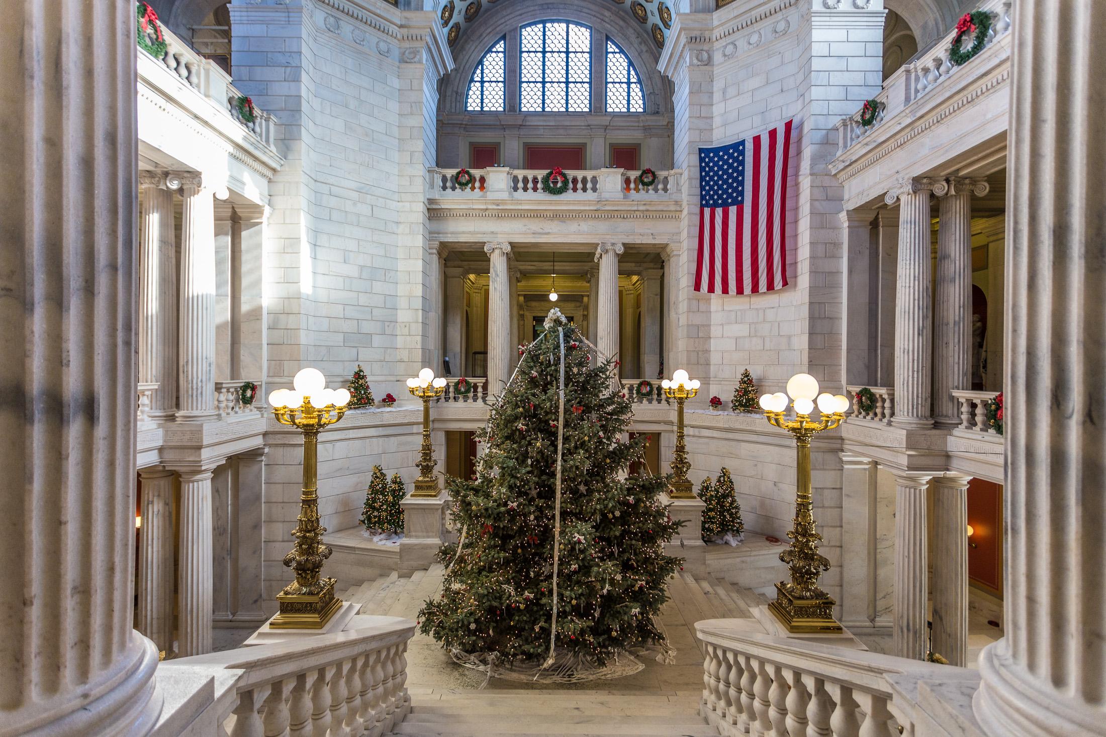 File Christmas Tree At Rhode Island State House 2013  - Christmas Trees Ri