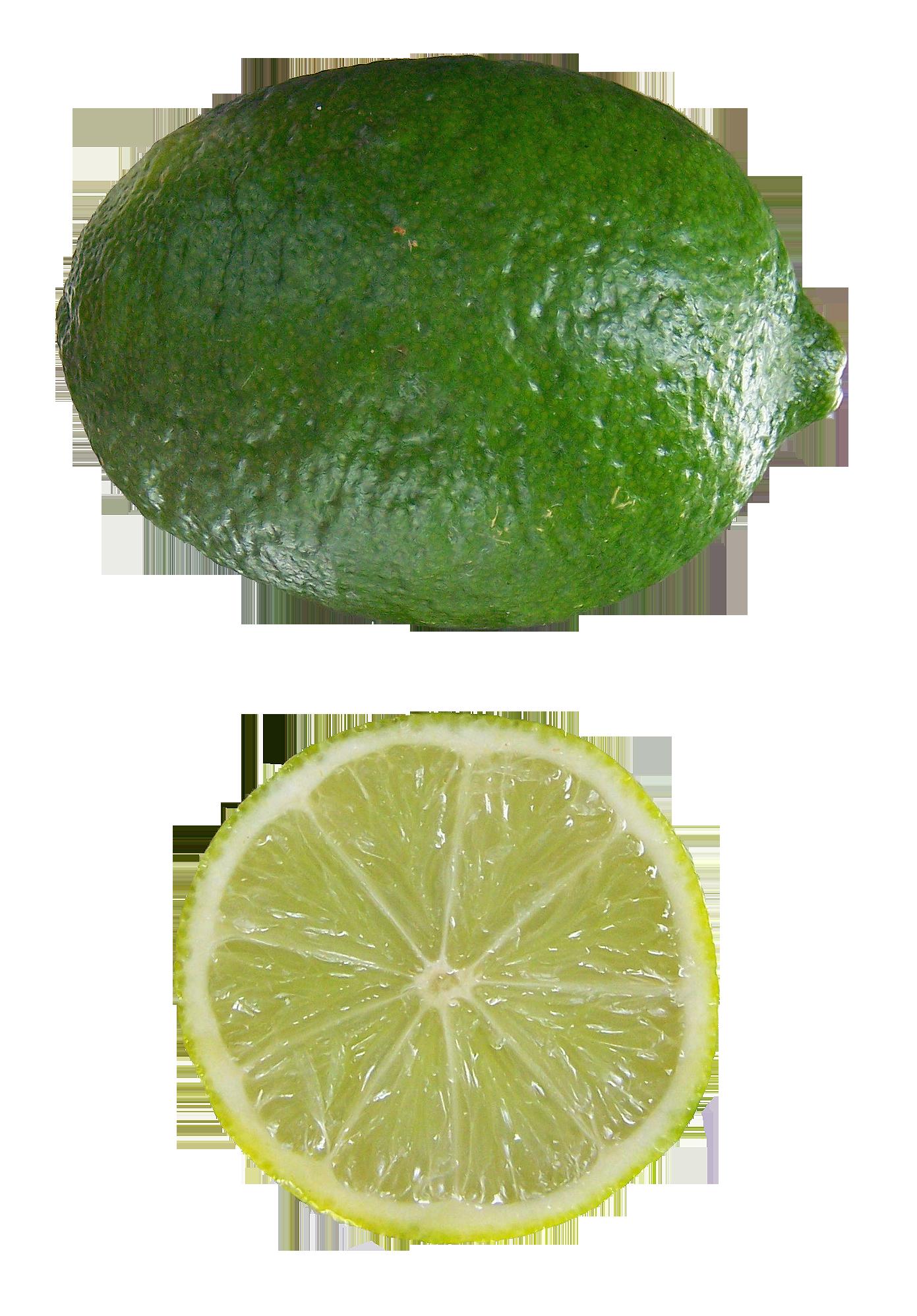 File:Citrus aurantifolia Mexican Lime.png