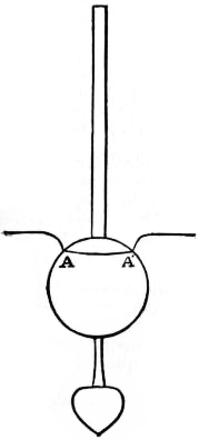 EB1911 - Hydrometer Fig. 4—Surface tension.jpg