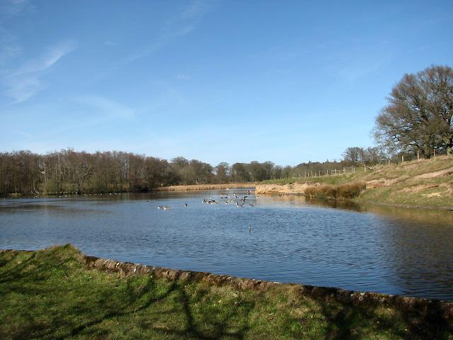 Felbrigg Pond - geograph.org.uk - 724692