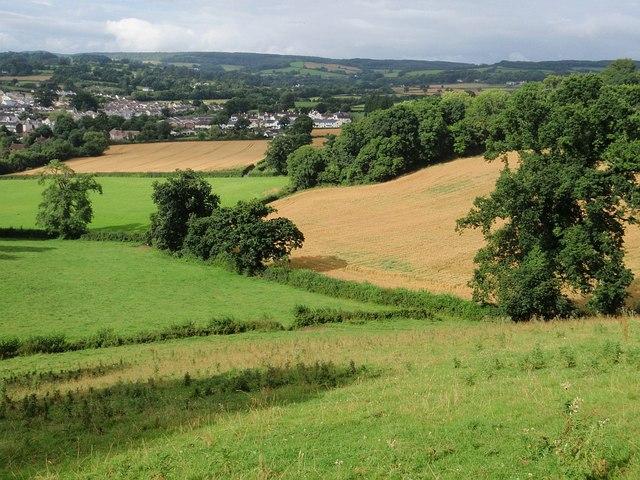 Fields near Chudleigh - geograph.org.uk - 907972