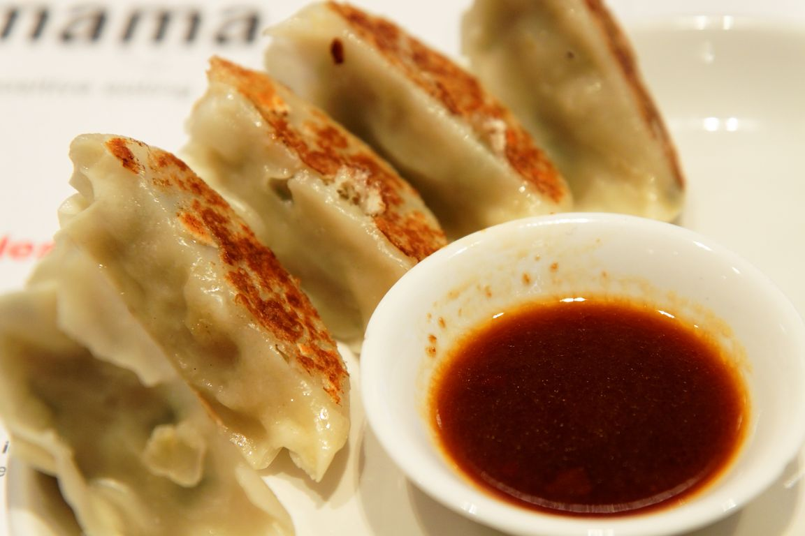 Cooking with Remington: Western-Style Gyoza