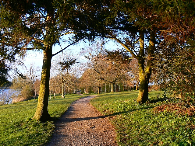 Footpath, Coate Water country park, Swindon - geograph.org.uk - 759722