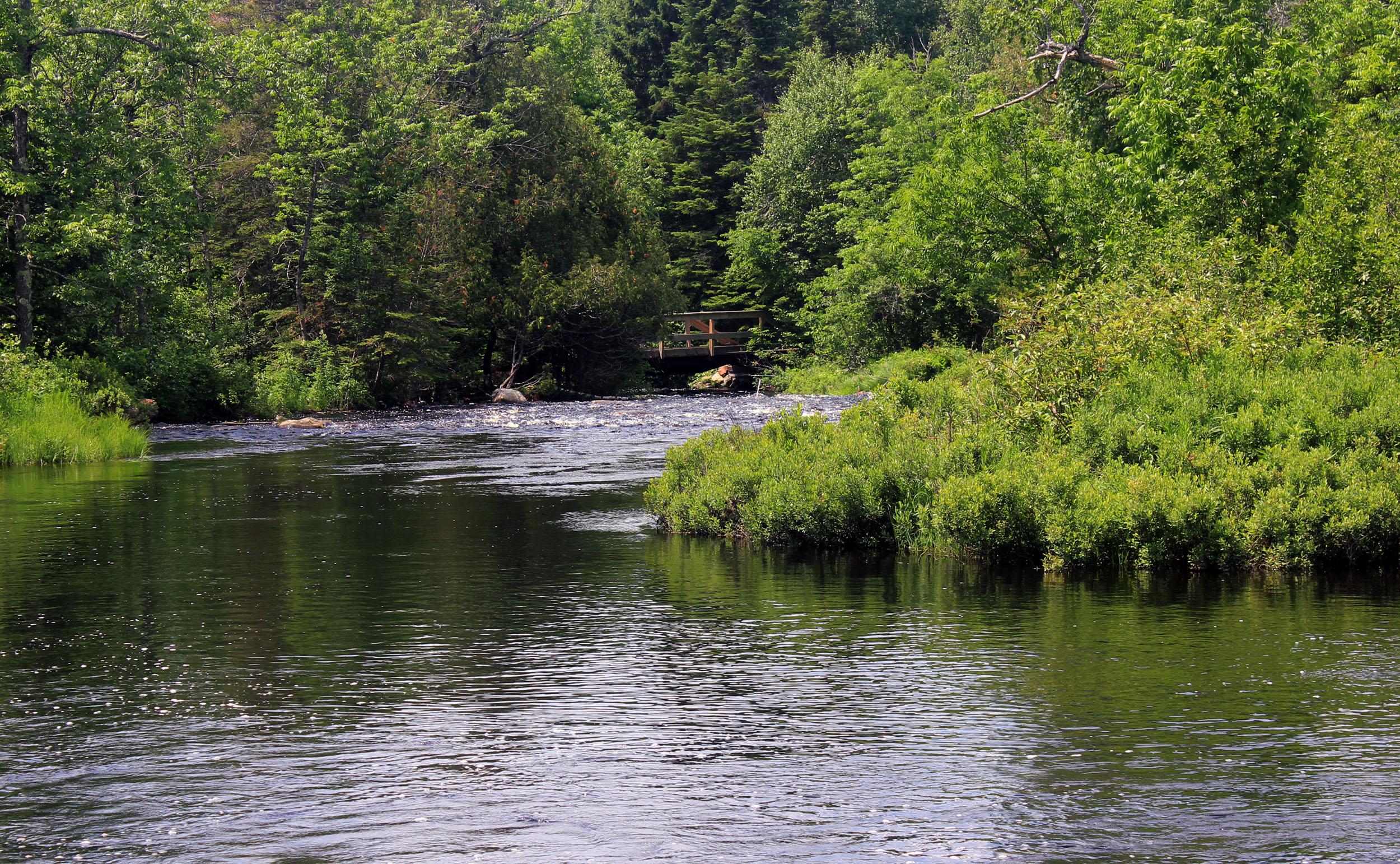 File Gfp Minnesota Superior Nationa Forest Baptism River