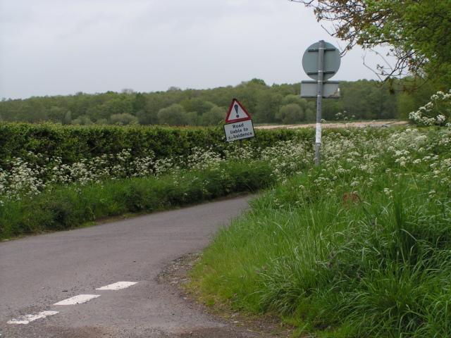 File:Lanes near Buscott - geograph.org.uk - 1306940.jpg