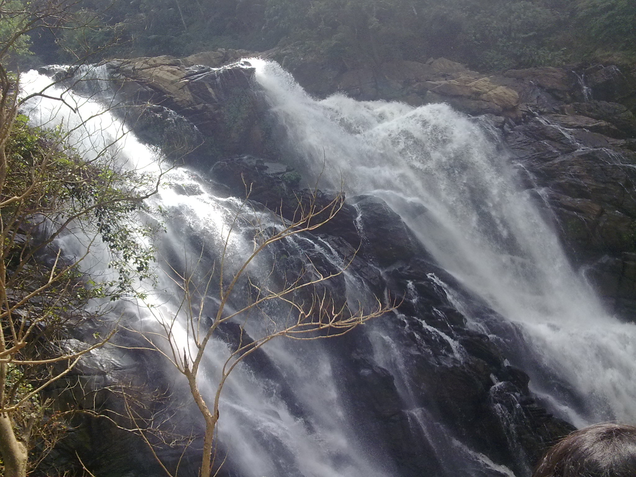 """Wayanad"" - Offbeat, Unexplored Destination in Kerela! 3"