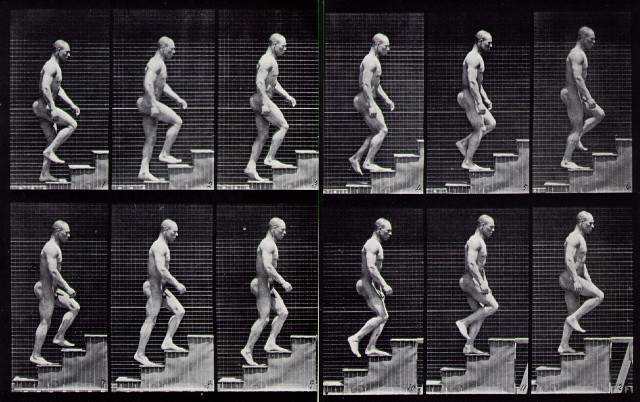 Muybridge ascending stairs