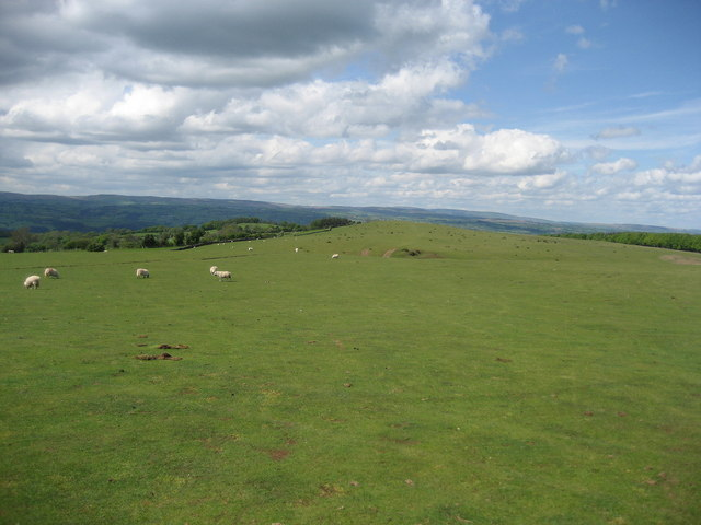 Offa's Dyke Trail aiming for Tack Wood - geograph.org.uk - 442292