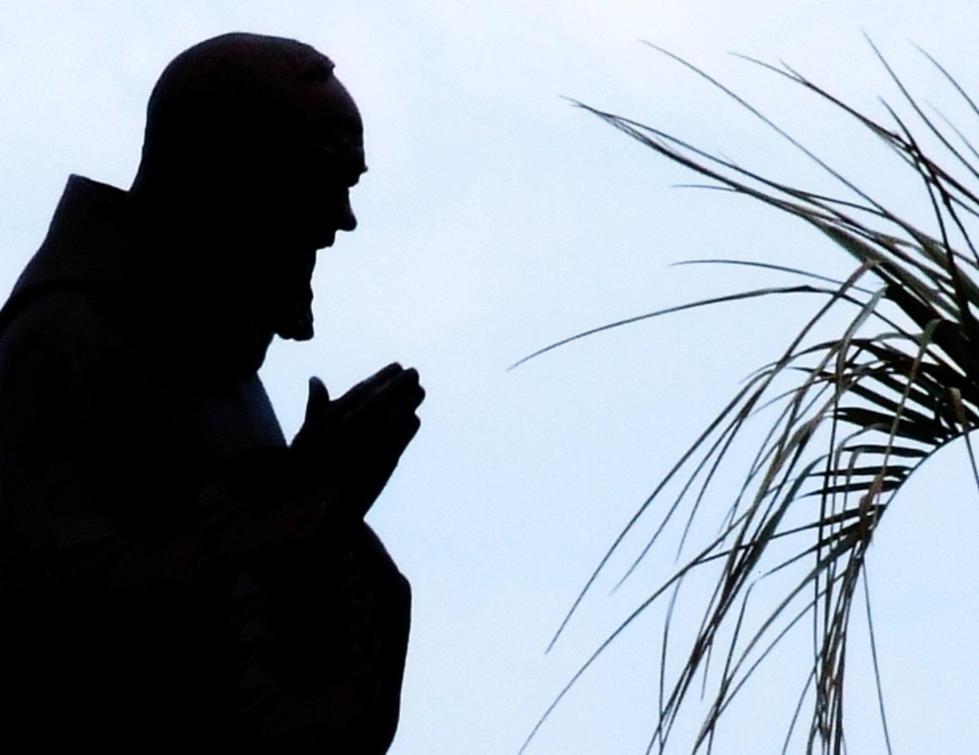 Padre Pio Island Bohol St Peter