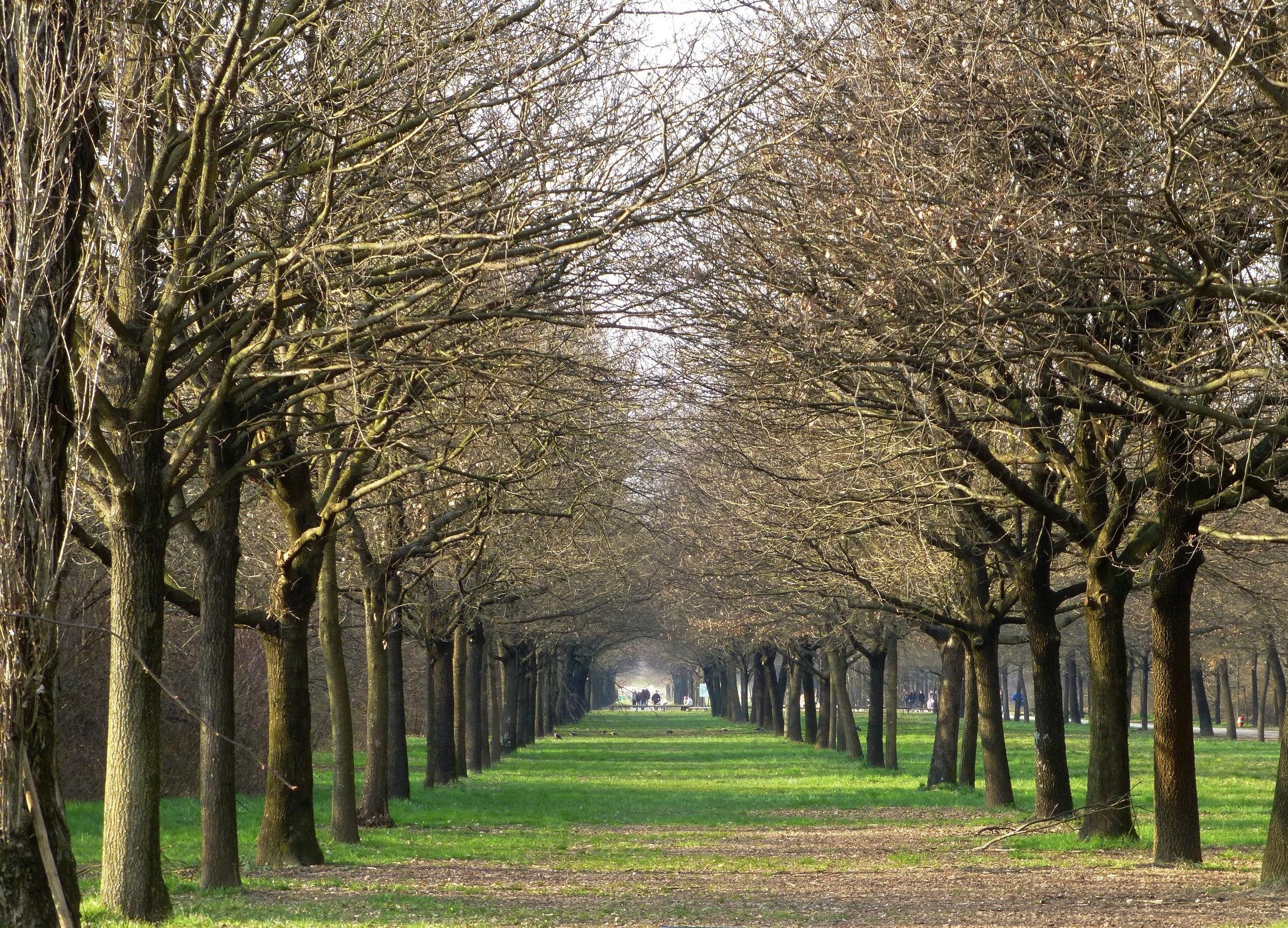 Parco Nord Milano.jpg