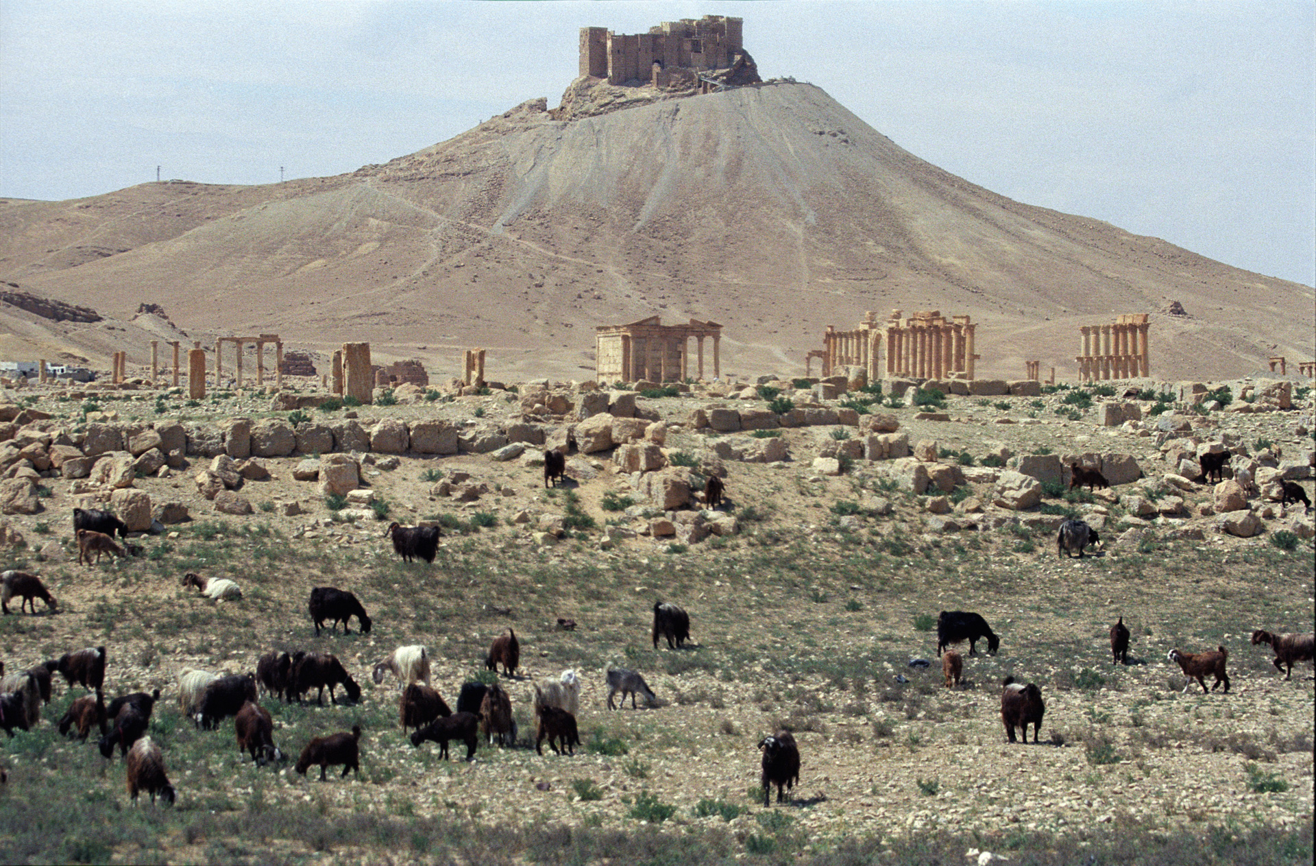 Depiction of Qalat