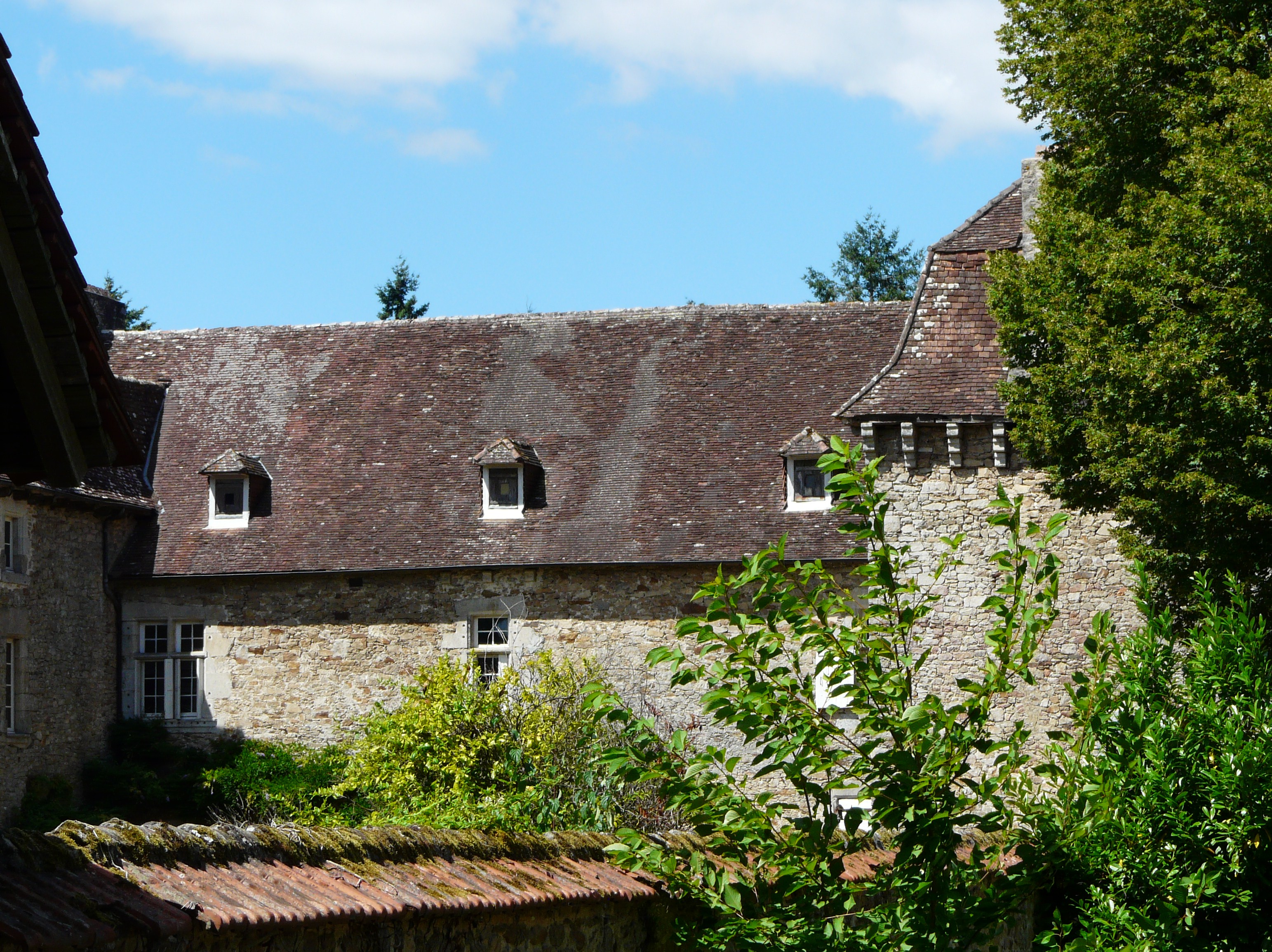 https://upload.wikimedia.org/wikipedia/commons/4/4f/Saint-Yrieix-la-Perche_ch%C3%A2teau_Douillac_%281%29.jpg
