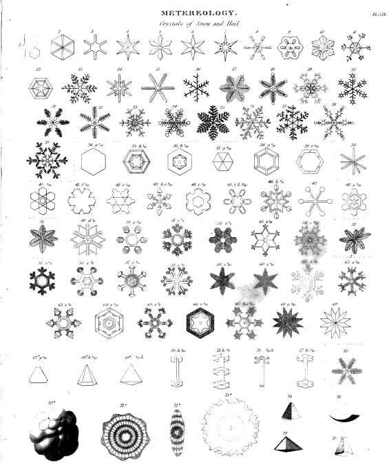 Snow png file snow flakes harvey