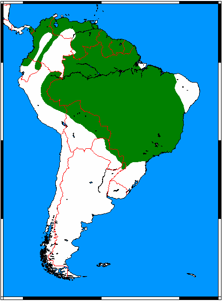 File:Speothos venaticus range map.png - Wikimedia Commons