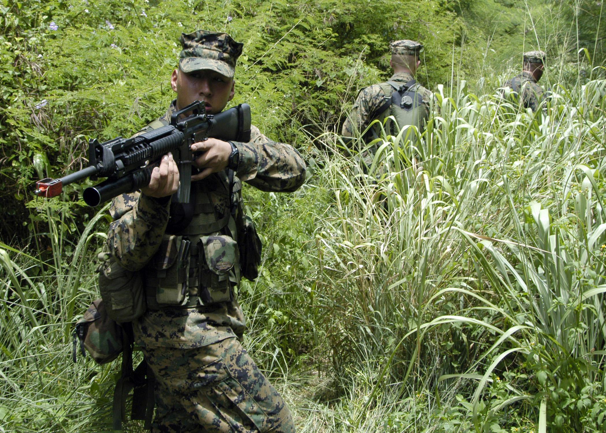 File:US Navy 050627-N-1397H-186 An alert U.S. Marine Corps ...