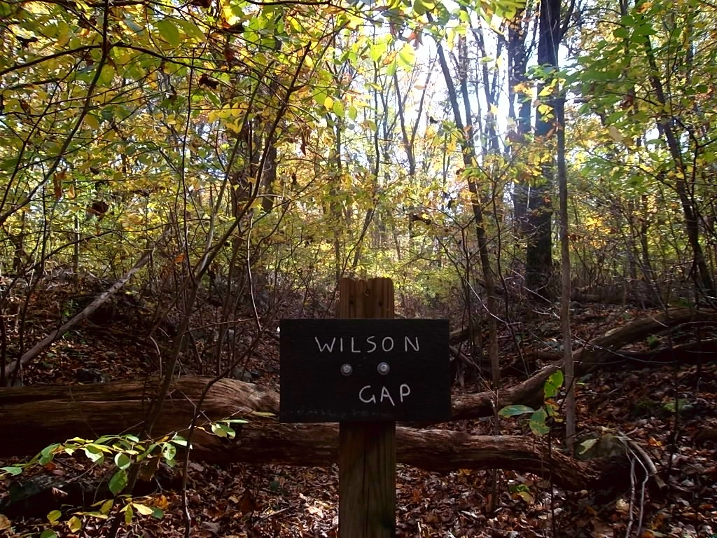 Wilson Gap